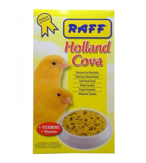 Holland cova